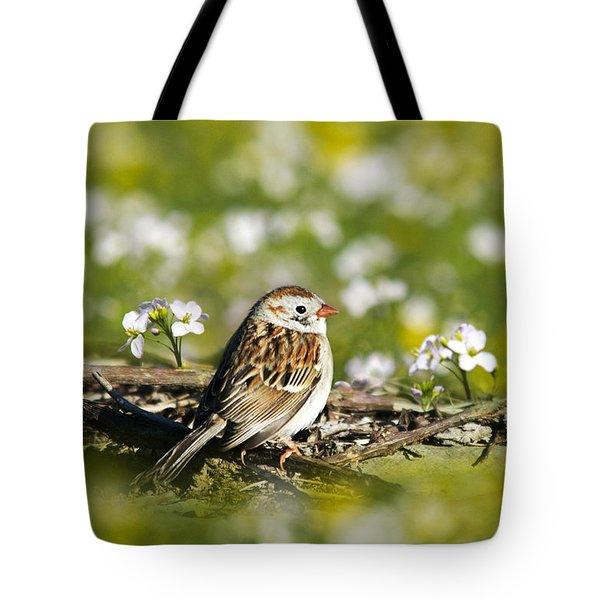 Wild Birds - Field Sparrow Tote Bag by Christina Rollo