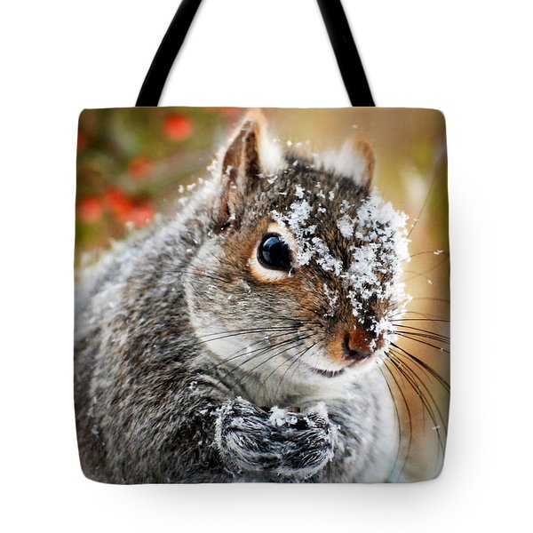 Wild Expedition Tote Bag by Christina Rollo
