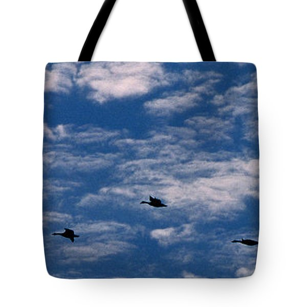 Wild Goose Heaven Tote Bag by Skip Willits