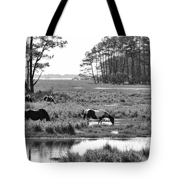 Wild Horses Of Assateague Feeding Tote Bag by Dan Friend