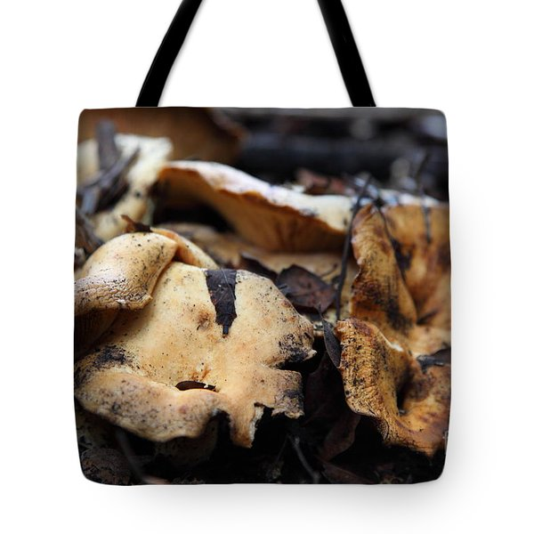 Wild Mushrooms On The Forest Floor - 5D21078 Tote Bag by Wingsdomain Art and Photography