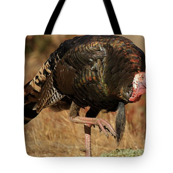 Wild Turkey Tote Bag by Adam Jewell