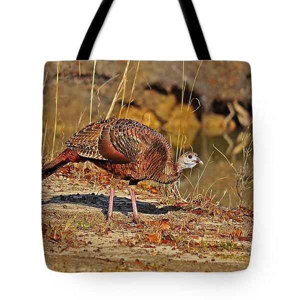 Wild Turkey Tote Bag by Al Powell Photography USA