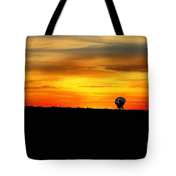 Wild Turkey At Sunset Tote Bag by Dan Friend