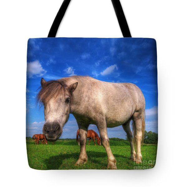 Wild Young Horse On The Field Tote Bag by Michal Bednarek