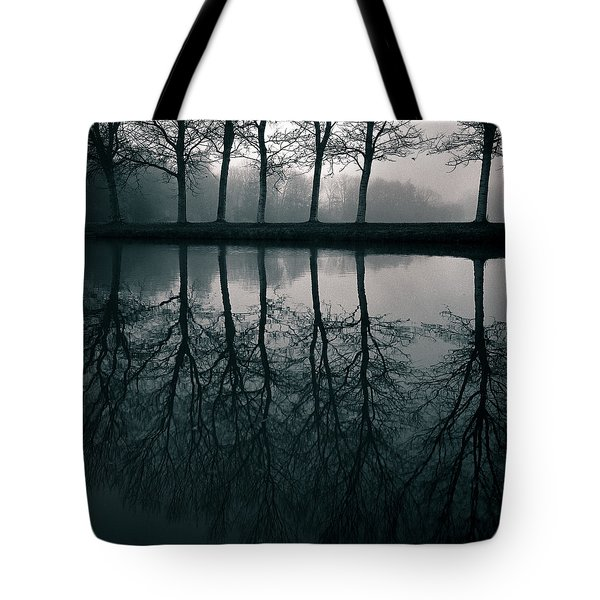 Wilhelminapark Tote Bag by Dave Bowman