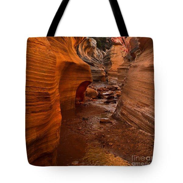 Willis Creek Slot Canyon Tote Bag by Robert Bales
