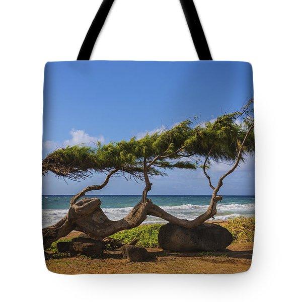 Wind Blown Tree 2 - Kauai Hawaii Tote Bag by Brian Harig