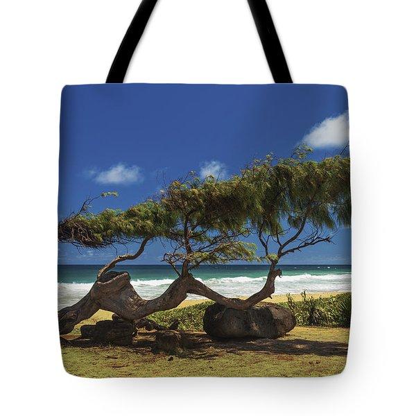 Wind Blown Tree Tote Bag by Brian Harig
