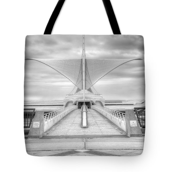 Wing Span Tote Bag by Scott Norris