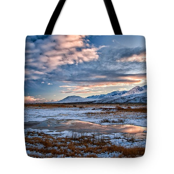 Winter Afternoon Tote Bag by Cat Connor
