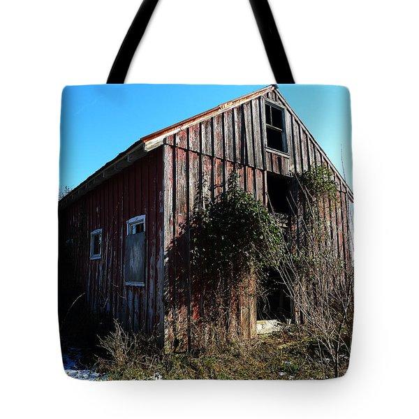 Winter Barn Tote Bag by Richard Reeve