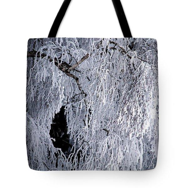 Winter Blanket Tote Bag by Sharon Elliott