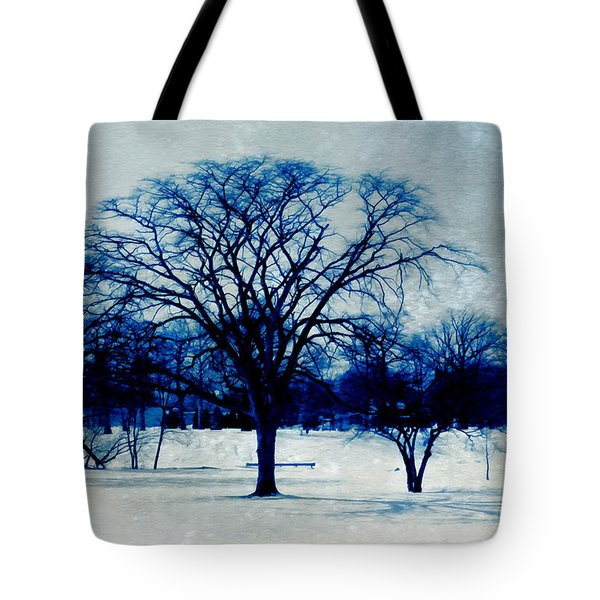 Winter Blues Tote Bag by Shawna  Rowe