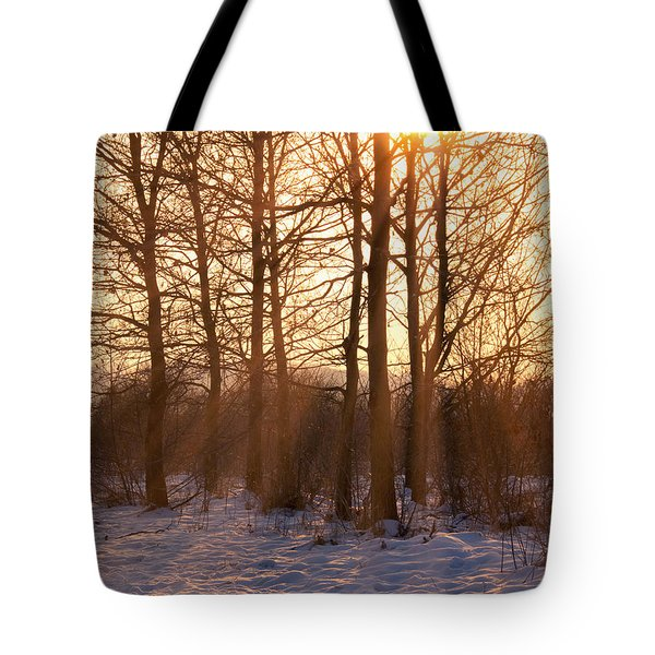 Winter Break Tote Bag by Wim Lanclus