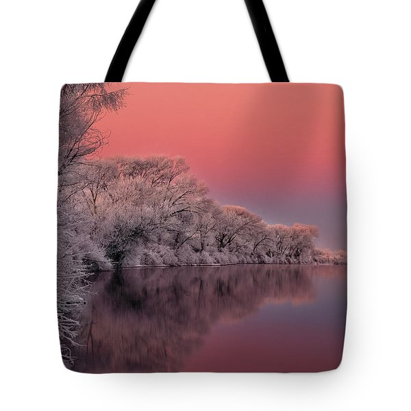 Winter Color Tote Bag by Leland D Howard