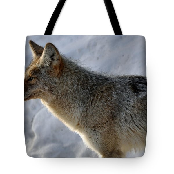 Winter Coyote in Yellowstone Tote Bag by Bruce Gourley