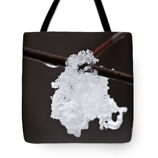Winter Detail Tote Bag by Elena Elisseeva