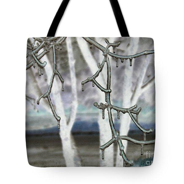Winter Diffused Tote Bag by Arlene Carmel