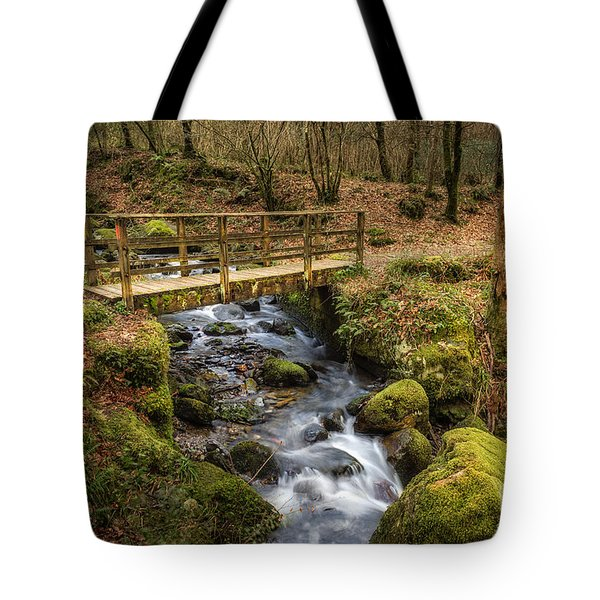 Winter Footbridge Tote Bag by Adrian Evans