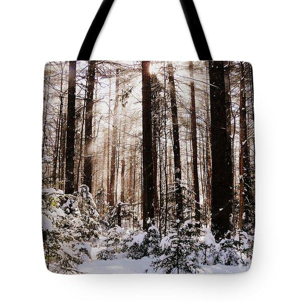 Winter Forest Tote Bag by Avis  Noelle
