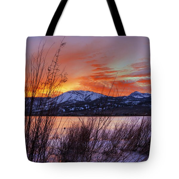 Winter Glow Tote Bag by Dianne Phelps