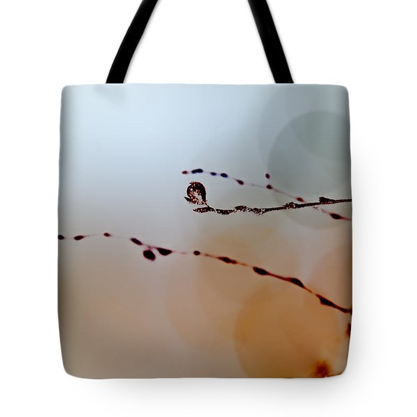 Winter Impressions Tote Bag by Bob Orsillo