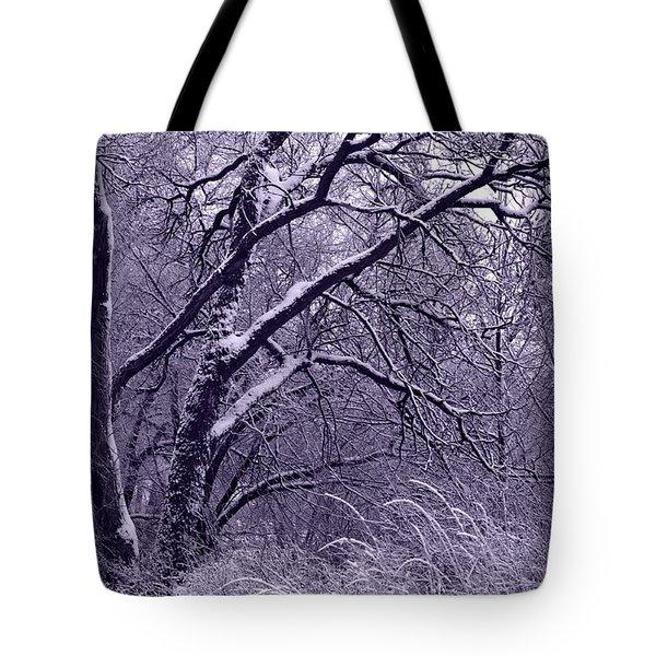Winter in Purple Tote Bag by Carol Groenen