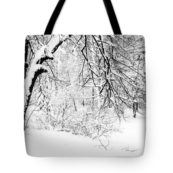 Winter Lace II Tote Bag by Jenny Rainbow
