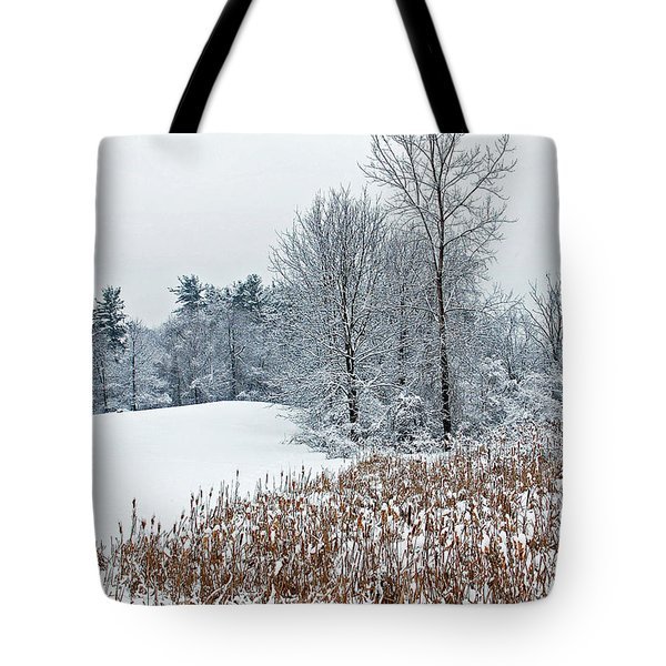 Winter Landscape Tote Bag by Aimee L Maher Photography and Art Visit ALMGallerydotcom