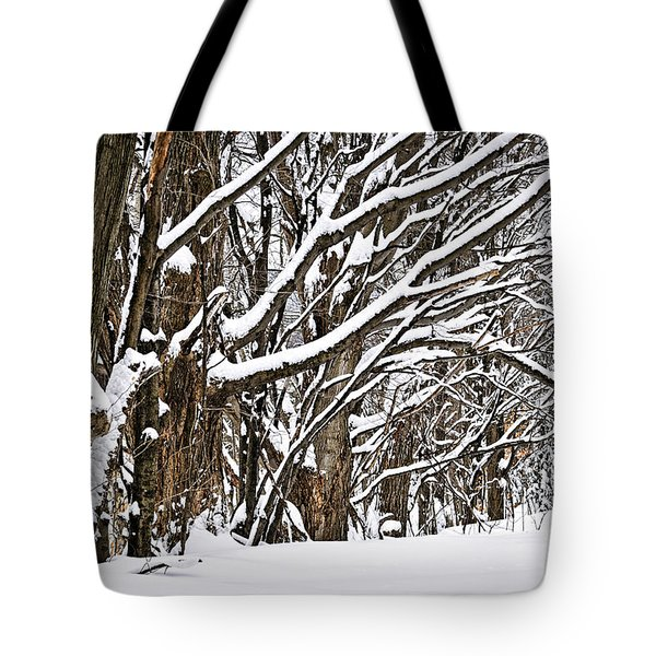 Winter Landscape Tote Bag by Elena Elisseeva