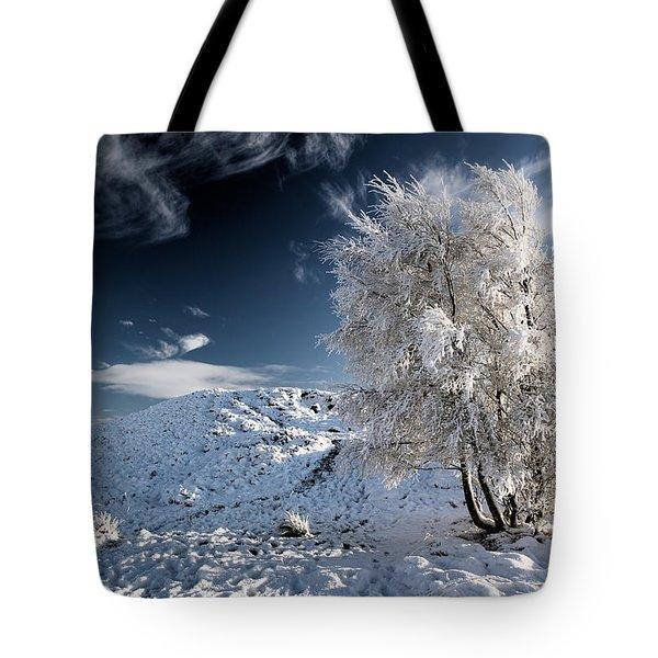 Winter Landscape Tote Bag by Grant Glendinning