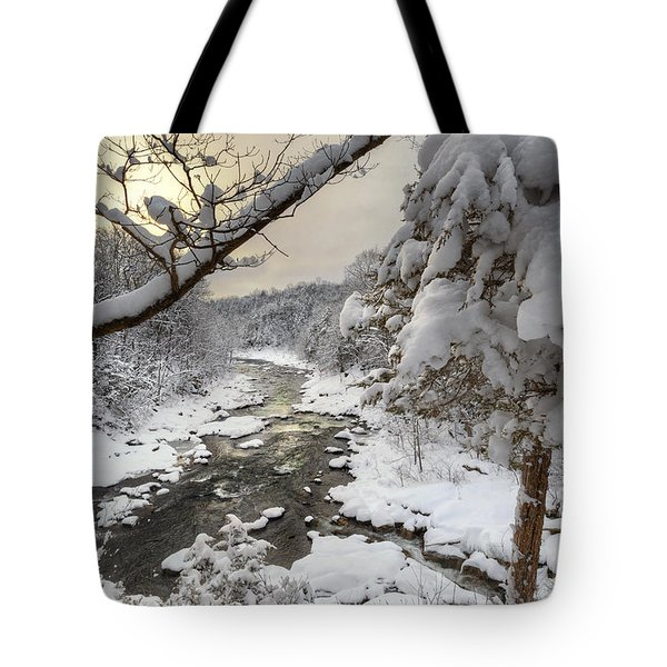 Winter Morning Tote Bag by Bill  Wakeley