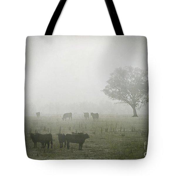 Winter Morning Londrigan 5 Tote Bag by Linda Lees