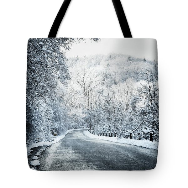 Winter road in forest Tote Bag by Elena Elisseeva