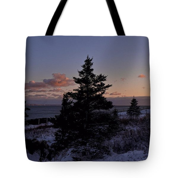 Winter Sentinel Lighthouse Tote Bag by Marty Saccone