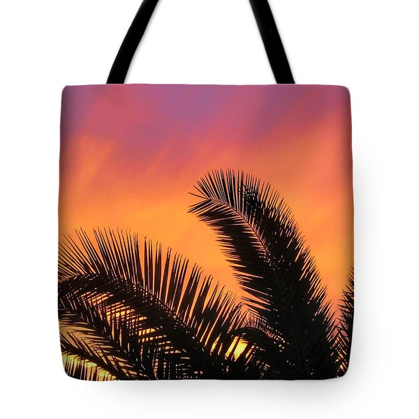 Winter Sunset Tote Bag by Tammy Espino
