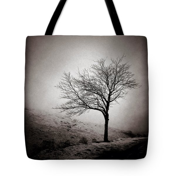 Winter Tree Tote Bag by Dave Bowman
