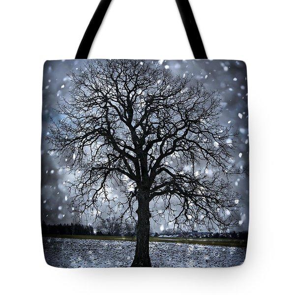 Winter Tree In Snowfall Tote Bag by Elena Elisseeva