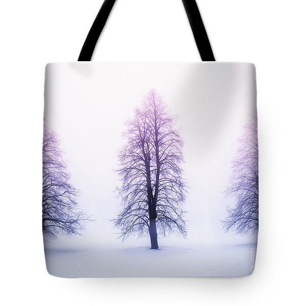 Winter Trees In Fog At Sunrise Tote Bag by Elena Elisseeva