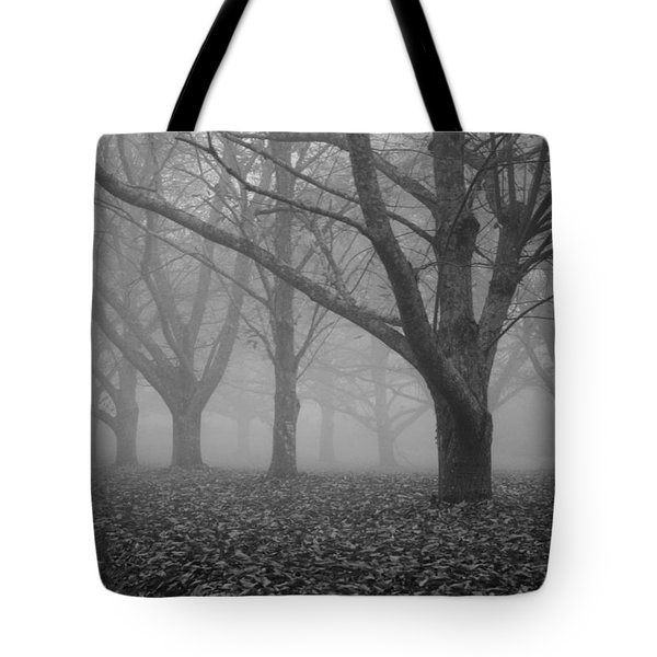 Winter trees in the mist Tote Bag by Nomad Art And  Design