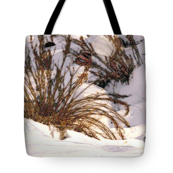 Winter Weeds Tote Bag by Kae Cheatham