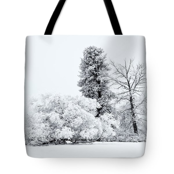 Winter White Tote Bag by Mike  Dawson