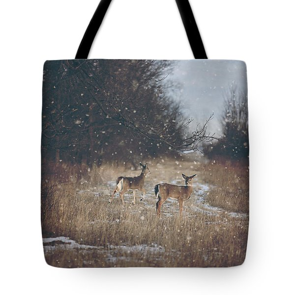 Winter Wonders Tote Bag by Carrie Ann Grippo-Pike
