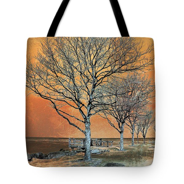 Winter's Dawn Tote Bag by Shawna  Rowe