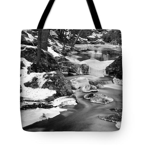 Winter's Grace Tote Bag by Luke Moore