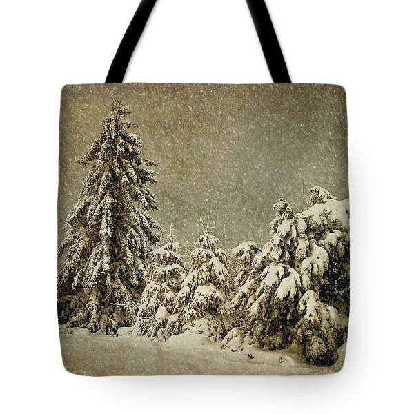 Winter's Wrath Tote Bag by Lois Bryan