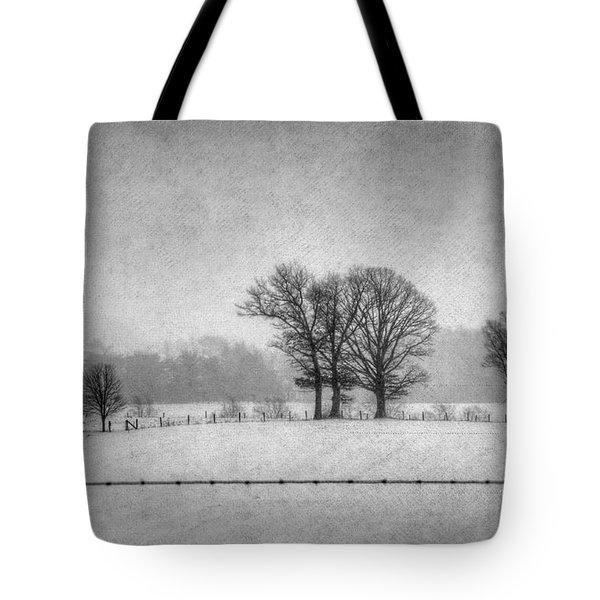 Wintry Scene Tote Bag by Dan Friend