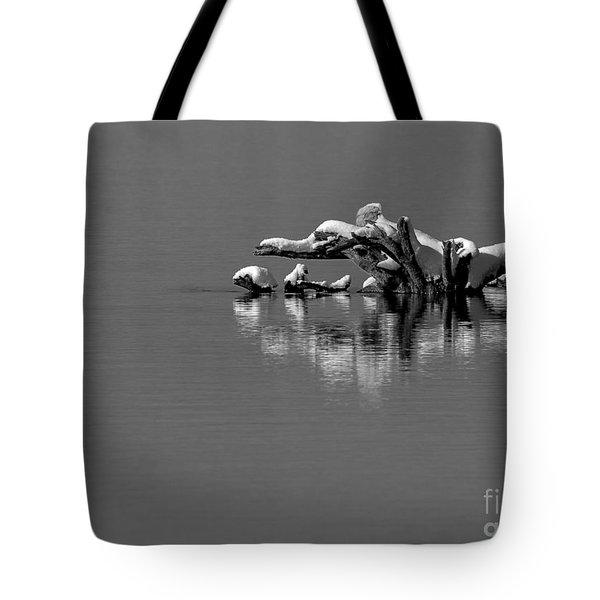 Wisconsin River Tote Bag by Steven Ralser