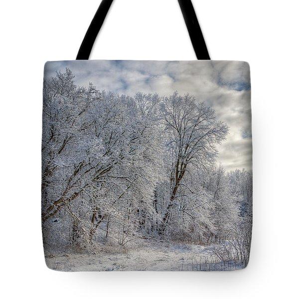 Wisconsin Winter Tote Bag by Joan Carroll